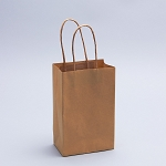 Paper Craft Bags