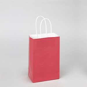 "8"" Paper craft bags CORAL (12PCS)"
