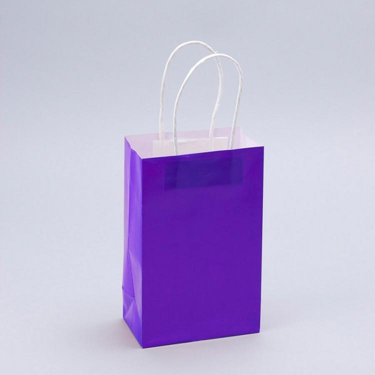 8 Paper Craft Bags Purple 12pcs