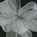 Wired Metallic ribbon SHEER
