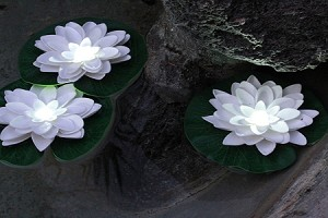 Floating lily pad with white LED
